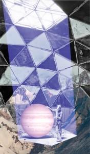 Cosmos 110 visuel 6